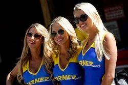 Le belle ragazze Turner Motorsports