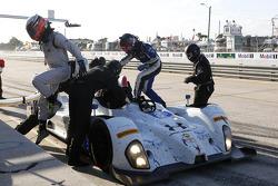 #8 Starworks Motorsport ORECA FLM09 Chevrolet: Mirco Schultis, Renger van der Zande, Sam Bird, Martin Fuentes