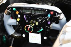 Sahara Force India F1 VJM07, volante
