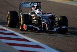Sergey Sirotkin, Sauber, Testfahrer