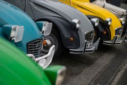 Un line-up de Citroën 2CV