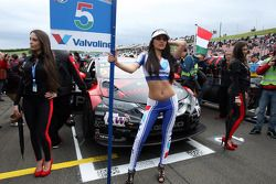 The Grid Girl of Norbert Michelisz, Honda Civic WTCC, Zengo Motorsport