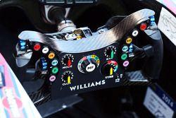 威廉姆斯FW36赛车—方向盘