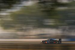 Ренгер ван дер Занде, Джордан Тейлор, Райан Хантер-Рей, Wayne Taylor Racing, Cadillac DPi-V.R (№10)