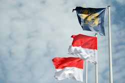 FIA and Monaco flags