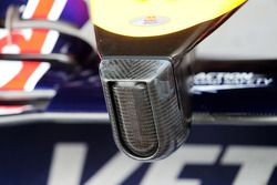 Red Bull Racing RB10 neus detail
