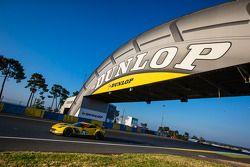 #74 Corvette Racing Chevrolet Corvette C7: Oliver Gavin, Tom Milner, Richard Westbrook