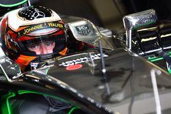 Stoffel Vandoorne, McLaren MP4-29 Test ve Yedek Pilotu
