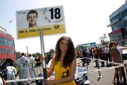 Gridgirl - Antonio Felix da Costa, BMW Team MTEK BMW M4 DTM