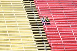 Fans solitaires