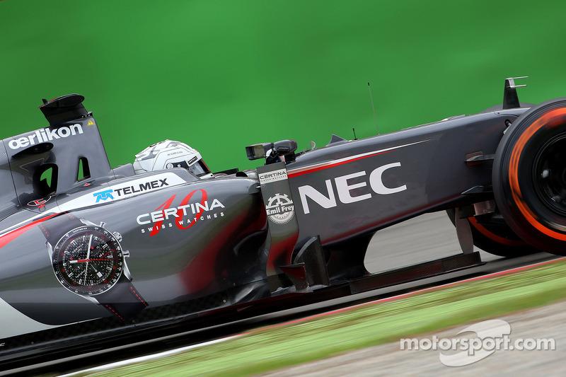 Giedo van der Garde, Sauber F1 Team, Testfahrer