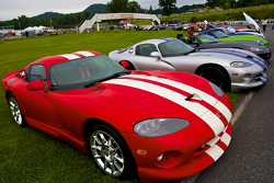 Sunday in the Park Concours with Viper GTSs