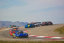#80 Lone Star Racing SRT 蝰蛇 GT3R: 丹·诺克斯