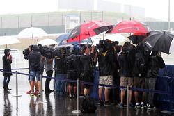 De media in een natte en regenachtige paddock