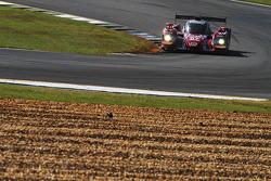#07 SpeedSource 马自达 原型车: 乔尔·米勒, 特里斯坦·努涅兹, 特里斯坦·沃捷