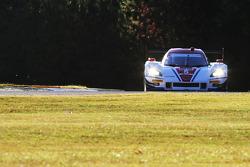 #5 Action Express Racing 雪佛兰克尔维特 DP: 若·巴博萨, 克里斯蒂安·费迪帕尔迪, 塞巴斯蒂安·波尔戴斯