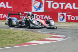 #1 Oak Racing Morgan Judd: David Cheng, Ho-Pin Tung