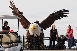 Un águila gigante
