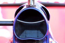 Toro Rosso teknik detayı