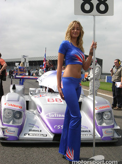 Une Grid Girl Audi Sport UK Team Veloqx