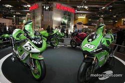 Les Kawasaki Girls