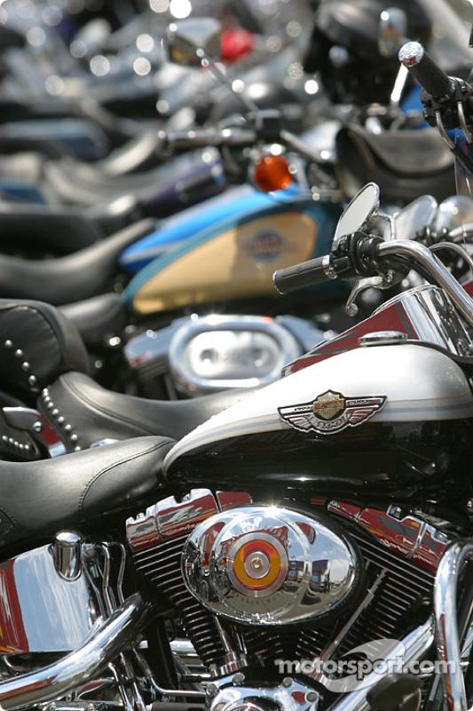 Charlotte Harley Davidson >> A Sea Of Harley Davidson In The Paddock At Charlotte
