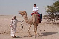 Mark Webber, a camel