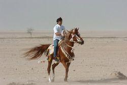 Antonio Pizzonia, ve Arab horse