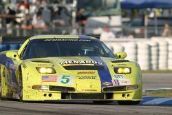 #5 Pacific Coast Motorsports Corvette C5-R: Alex Figge, Ryan Dalziel, Dave Empringham