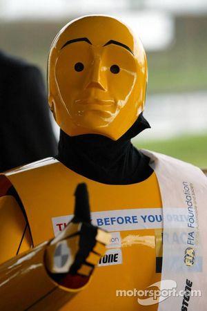 FIA Foundation, Bridgestone - Road Safety Campaign 'Think before you drive'