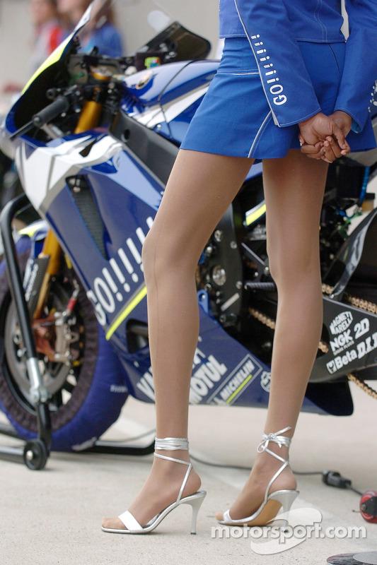 elegir original Últimas tendencias mejor calidad Moto de Valentino Rossi con una chica de paraguas at GP de ...