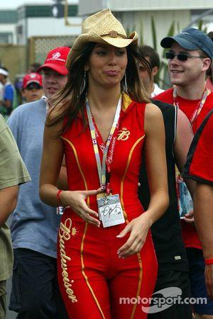 Chica Budweiser