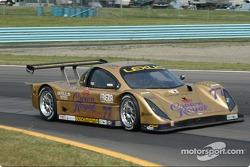 #77 Doran Racing Lexus Doran: Fabrizio Gollin;Matteo Bobbi