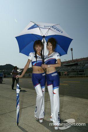 Симпатичные девушки Suzuki