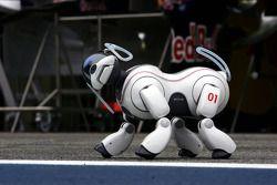 The Sony Aibo robot dog
