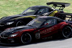#255 Gale Force Sim Racing BMW Z4 GT3