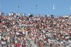Fans at Phoenix
