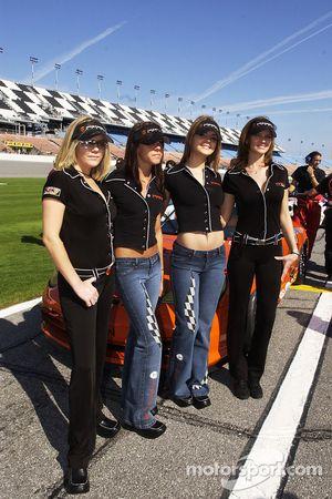 The lovely Hazardous girls