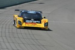 #77 Feeds The Need/ Doran Racing Ford Doran: Terry Borcheller, Harrison Brix