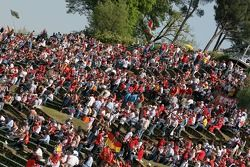 Supporter à Imola