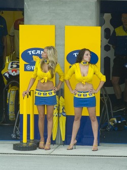 Les Yamaha Girls
