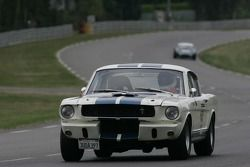 #62 Ford Shelby 1965