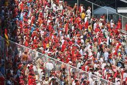 Ferrari fans in the grandstands
