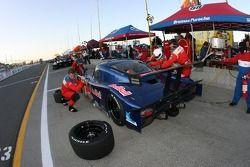 Pitstop for #58 Red Bull/ Brumos Porsche Porsche Riley: David Donohue, Darren Law