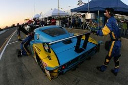 Pitstop for #30 Sigalsport BMW BMW Riley: Matthew Alhadeff, Bill Auberlen