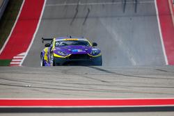 #62 Klenin Performance Racing, Aston Martin GT4: Mark Klenin
