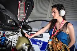 The girlfriend of Dusan Borkovic, Honda Civic WTCC, Proteam Motorsports