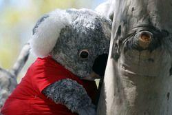 A toy koala bear