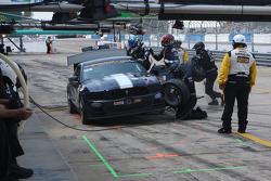 #158 Multimatic Motorsports, Mustang Boss 302R: Jade Buford, Austin Cindric