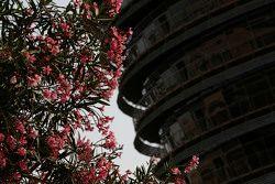 Des fleurs devant la Sakhir Tower